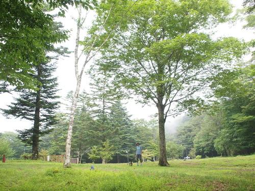 summer camp in 富士山 _e0243765_10103634.jpg