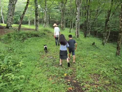 summer camp in 富士山 _e0243765_10495110.jpg