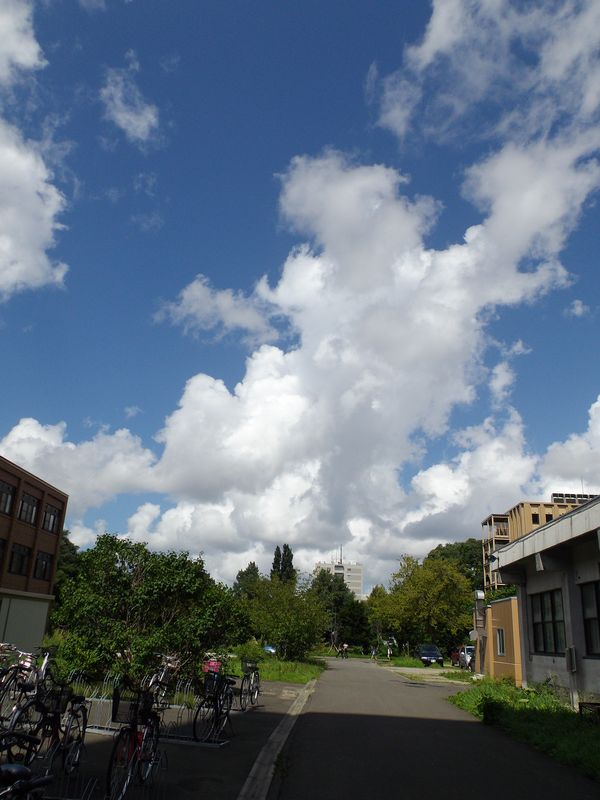 ようやく晴れた一日 寒さもひとしお_c0025115_18423328.jpg