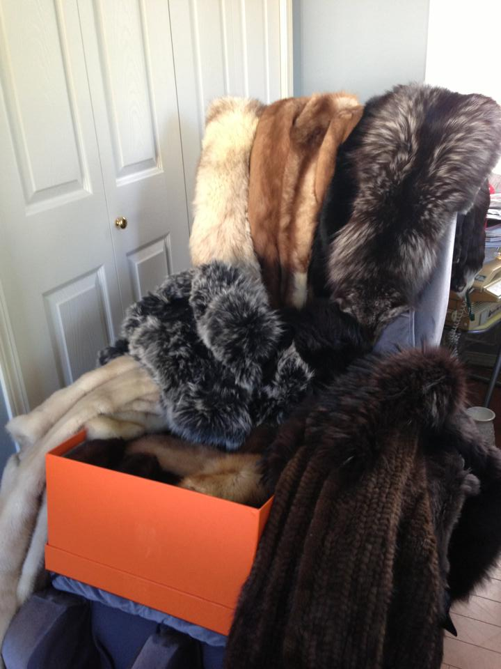My fur collection _f0215324_1347292.jpg