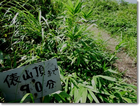 阿蘇ミニ周遊 2013年8月28日_c0147448_16143489.jpg