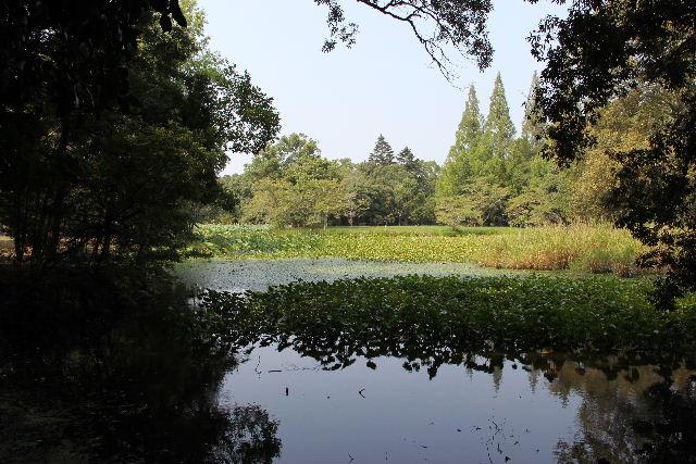 【宇佐神宮】 その2 菱形池、御霊水、下宮_c0011649_017218.jpg