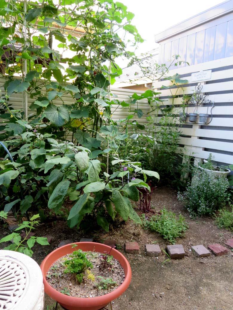 三つ編みマット…ガーデン用_f0182167_2058469.jpg