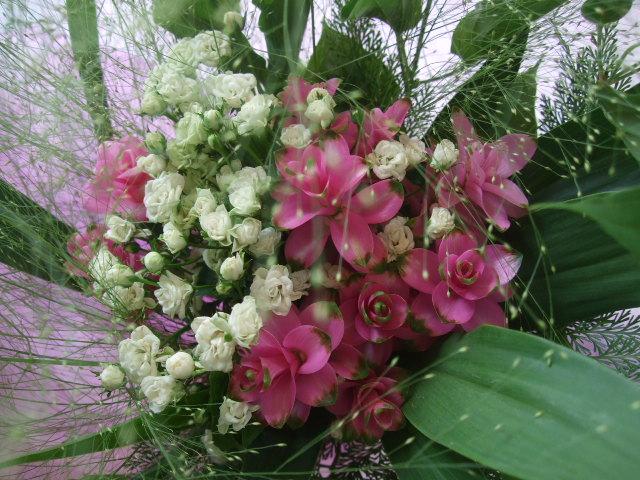 オークリーフ(小さな花)_f0049672_14194772.jpg