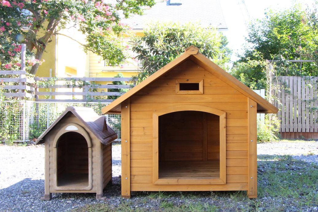 老犬介護         シロの新しい住まい_a0107574_8191822.jpg