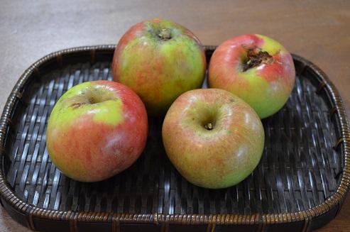 可愛いリンゴ_d0230676_13524856.jpg