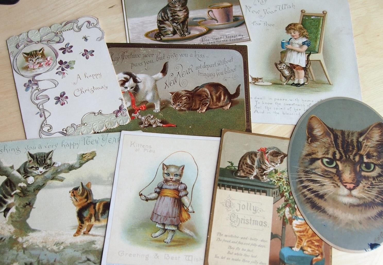 買い付け日記*2013夏〈可愛いネコのカード*妖精の絵本〉_c0094013_2343171.jpg