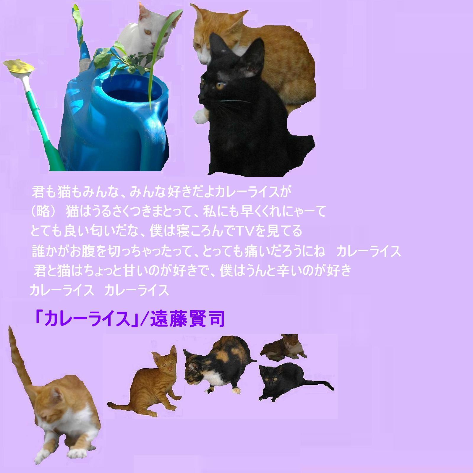e0295821_18513838.jpg