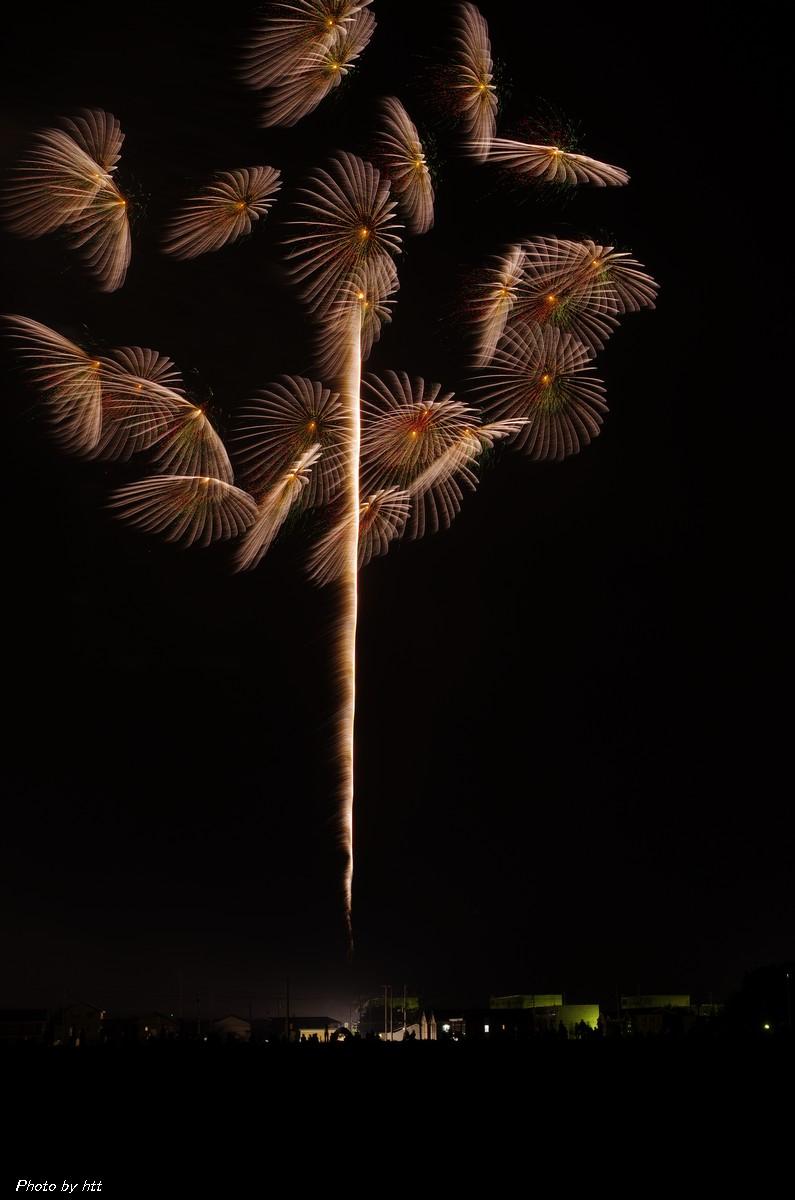 第87回全国花火競技大会 夜花火の部~10号玉 自由玉の部~_f0148627_20502116.jpg