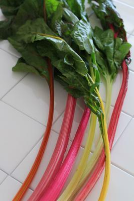 カラフルな野菜_b0165935_14294766.jpg