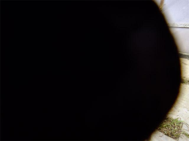黒まりも_a0179837_0164023.jpg