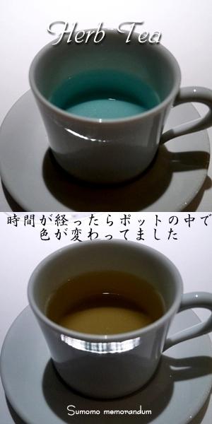 d0168442_168163.jpg