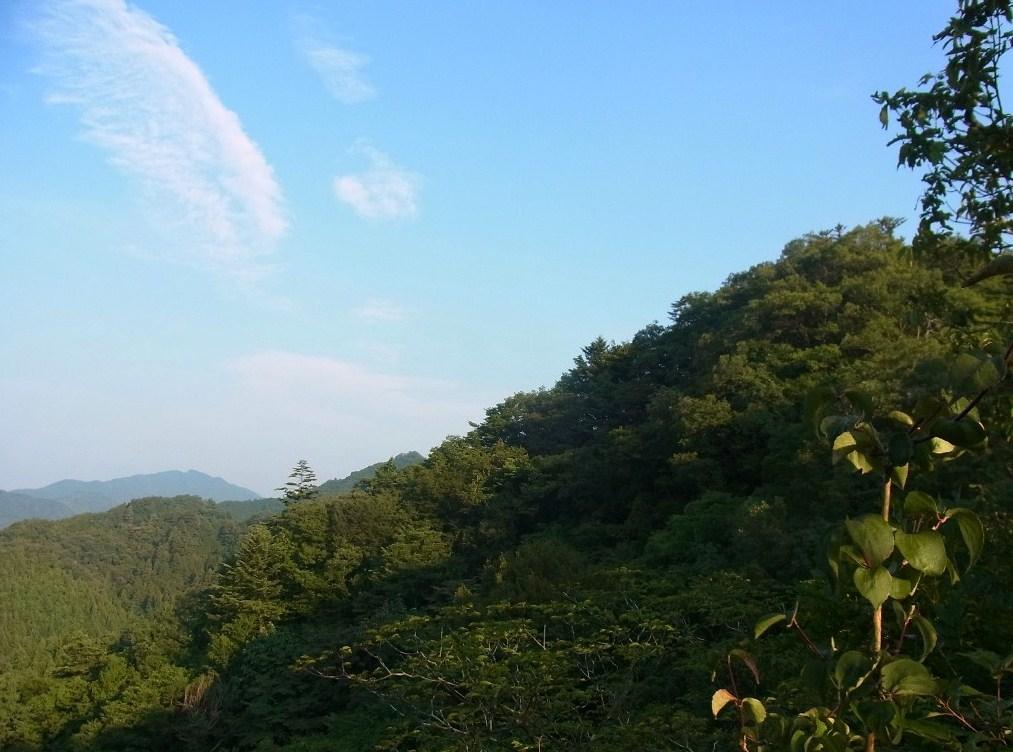 2013/08/29 駒倉山 金毘羅山 前編_d0233770_211129100.jpg
