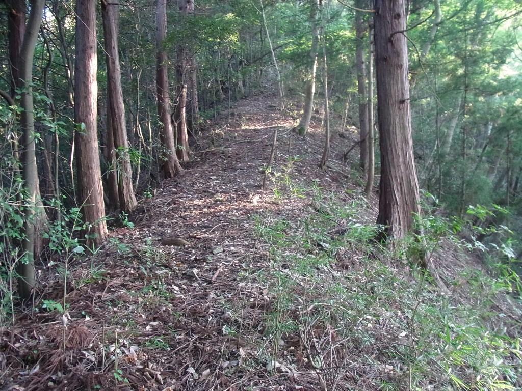 2013/08/29 駒倉山 金毘羅山 前編_d0233770_213152.jpg
