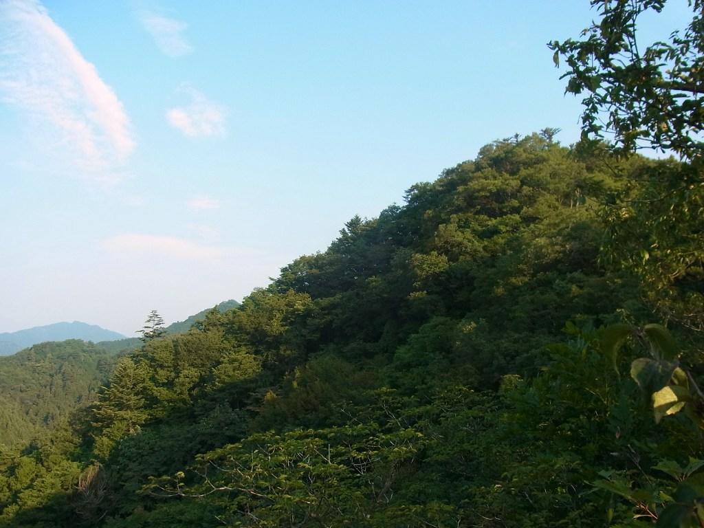 2013/08/29 駒倉山 金毘羅山 前編_d0233770_2152450.jpg