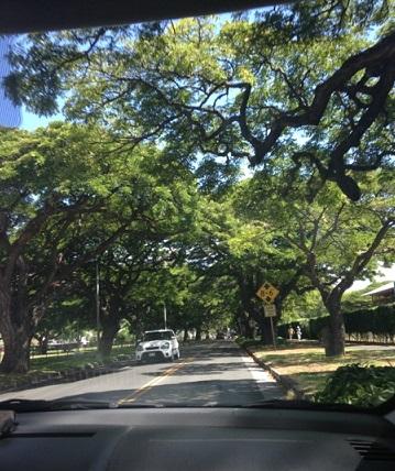 hawaii1_f0202682_12152384.jpg
