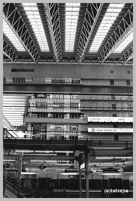 赤川仮橋 ~モノクロ編_f0139991_22261720.jpg