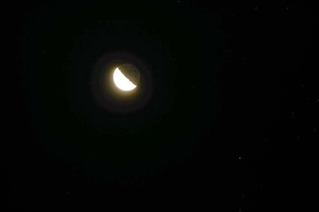 ハスカワセミ/月とアルデバラン_b0024798_20434456.jpg