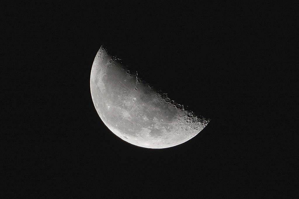 ハスカワセミ/月とアルデバラン_b0024798_2044272.jpg