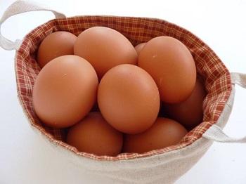 卵を洗わないということ_d0139806_21253519.jpg