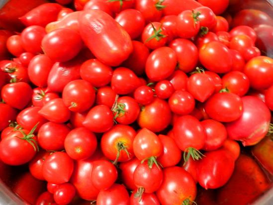 「畑から1年がかりのトマトソース」作り_a0125419_20355244.jpg