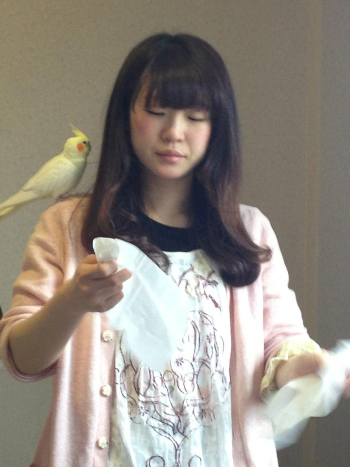 胸飾り 髪飾り  @大阪・西天満 雑貨店カナリヤ_a0137727_23235183.jpg