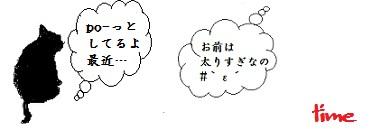 b0252727_6481887.jpg