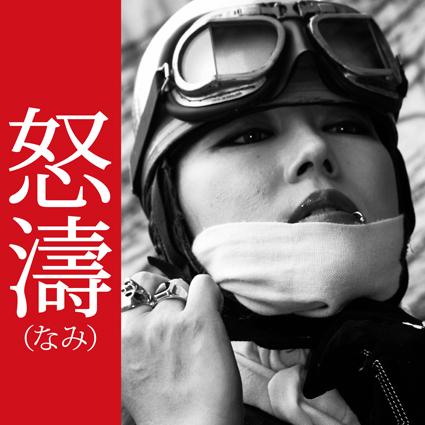 LINK【怒濤】_f0203027_1342297.jpg