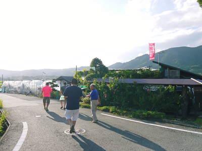 熊本ぶどう 社方園 8/29テレビタミン出演のメイキング裏話!!_a0254656_18393396.jpg
