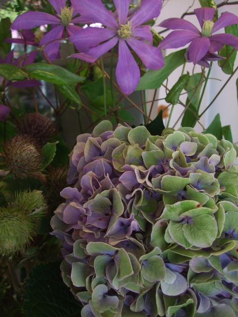オークリーフ(山の花も・・・)_f0049672_1356041.jpg
