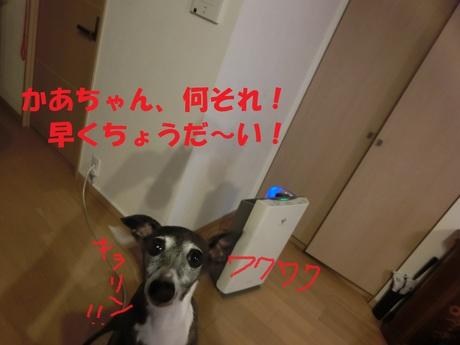 f0223972_1046092.jpg