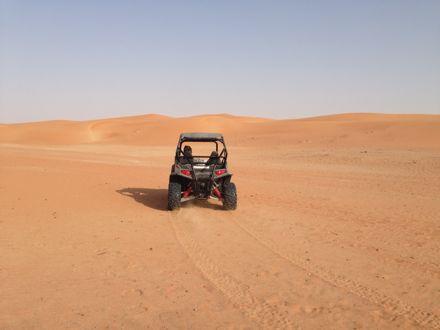 今朝は、砂漠なう。_e0066474_13424791.jpg