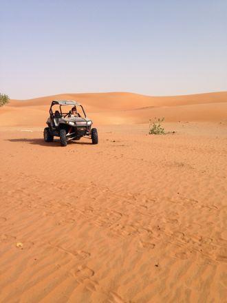 今朝は、砂漠なう。_e0066474_13424835.jpg