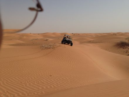 今朝は、砂漠なう。_e0066474_13424947.jpg