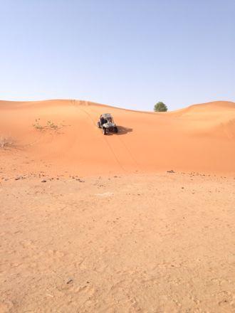 今朝は、砂漠なう。_e0066474_13425357.jpg