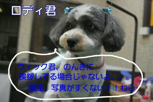 b0130018_012632.jpg