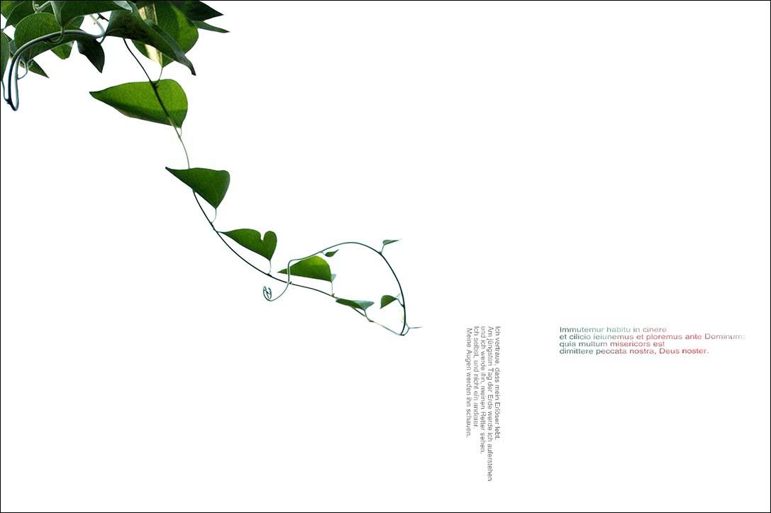 f0198771_035931.jpg