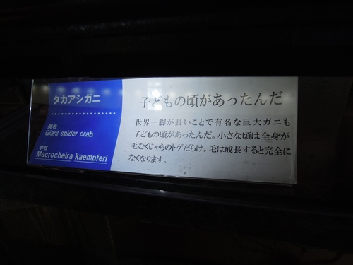 e0166016_20363860.jpg
