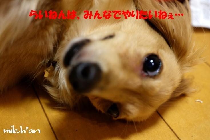 b0115642_18512668.jpg