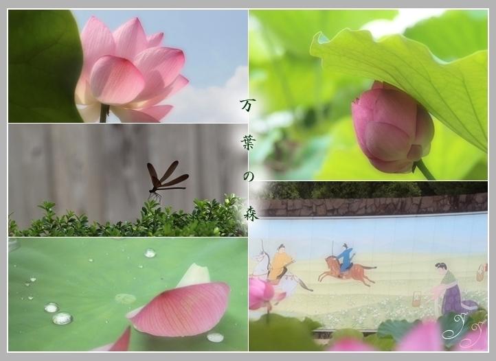 f0150243_2004957.jpg