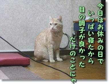 b0151748_9465660.jpg