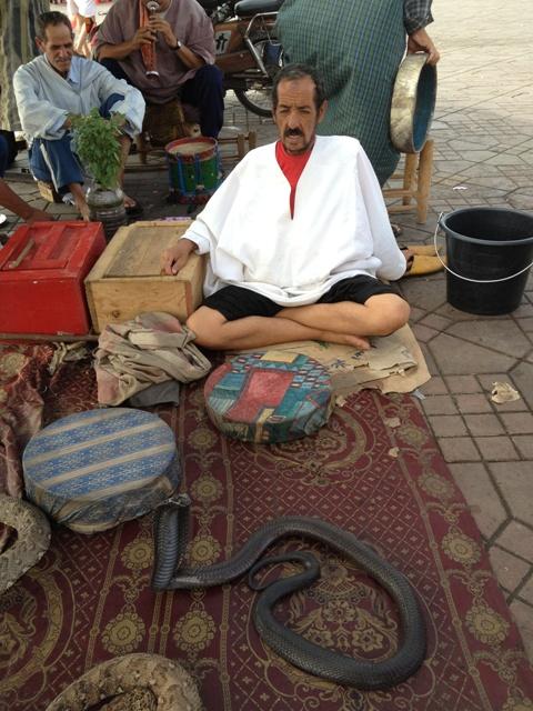 モロッコに行く。⑥ ~コブラ使いに会う~_f0232060_23321137.jpg