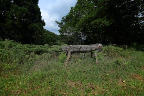 遠野不思議 第七百六十六話「デンデラ野の自然木ベンチ」_f0075075_15172757.jpg