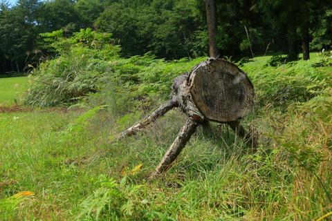遠野不思議 第七百六十六話「デンデラ野の自然木ベンチ」_f0075075_15234587.jpg