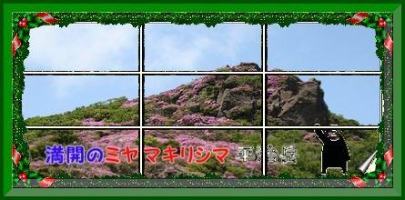 f0193521_19473929.jpg