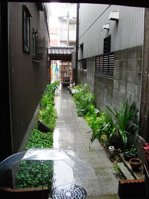 雨の路地_e0230141_1292338.jpg