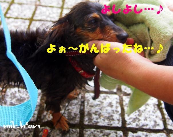 b0115642_22204044.jpg