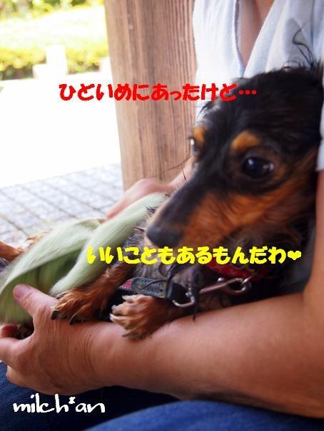 b0115642_22251191.jpg