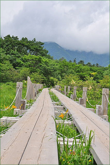 那須高原二日目・・・沼ッ原湿原をハイキング♪~_b0053765_1634352.jpg
