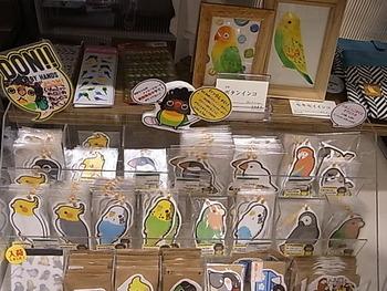 鳥展新着到着情報更新。東急ハンズ梅田店展示明日迄_d0322493_15163074.jpg